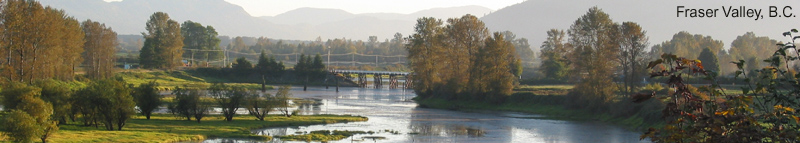 View of the bridge at Deroche in the Fraser Valley